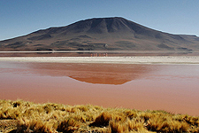 Picture Uyuni Salt Flats Tours (3 Days/2 Nights), Bolivia. Tours en , Bolivia