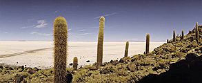 Uyuni Travel Guide, Bolivia